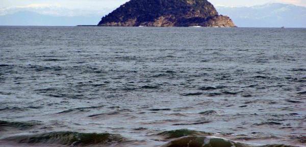 Isola-di-Gallinara.jpg