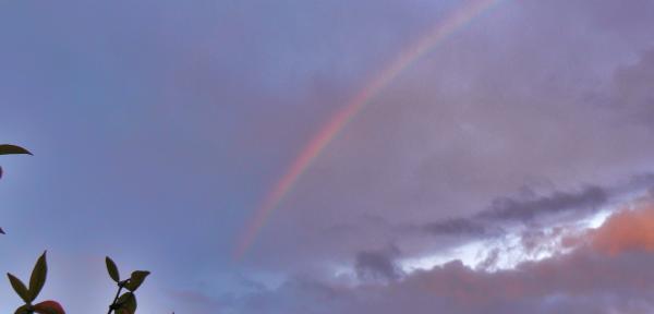 Ieri,-un-arcobaleno-3.jpg