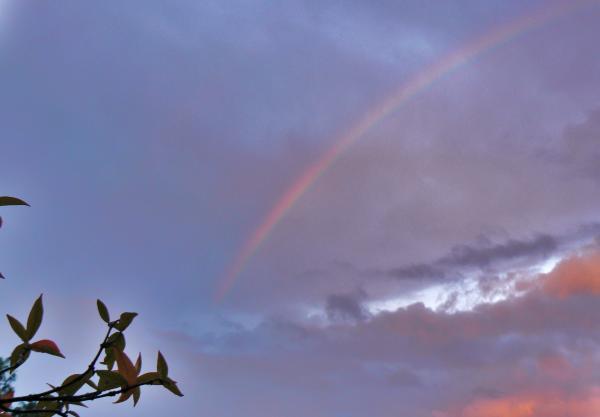 Ieri, un arcobaleno 3