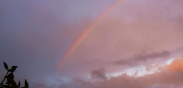 Ieri,-un-arcobaleno-4.jpg