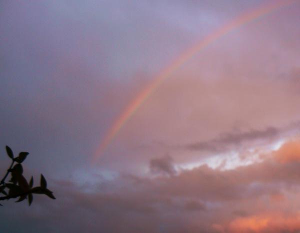 Ieri, un arcobaleno 4