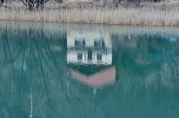 Coloti-nell'acqua-4.jpg