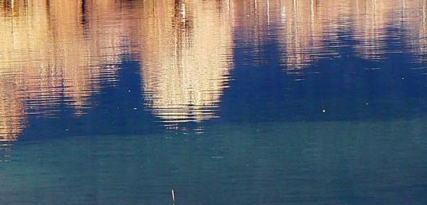 Colori-nell'acqua-1.jpg