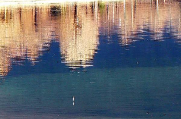 Colori nell'acqua 1